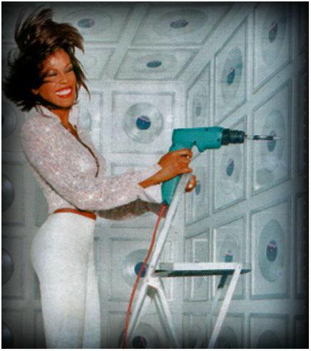 Whitney houston is dead ziblog for Connaitre ses heures creuses